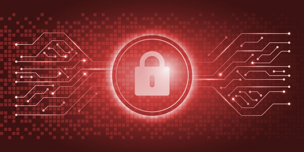 Building a cyber fortress – the intricacies of data security