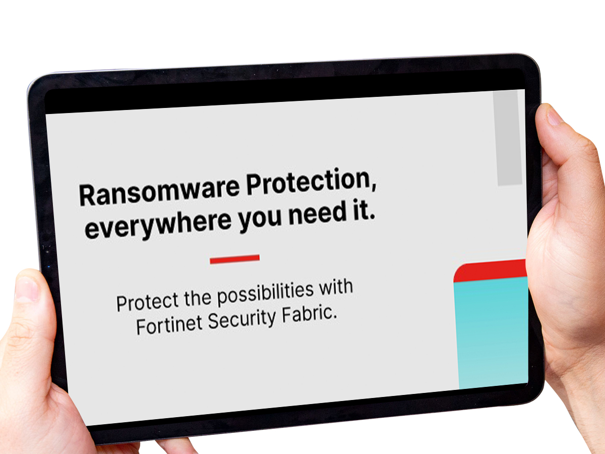 Whitepaper: LabsThe Rise of Ransomware POV